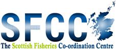 SFCC New Logoweb